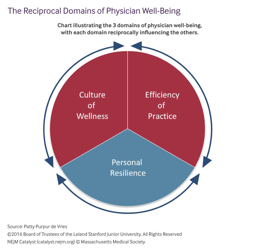 the-reciprocal-domains-of-physician-well-being-1